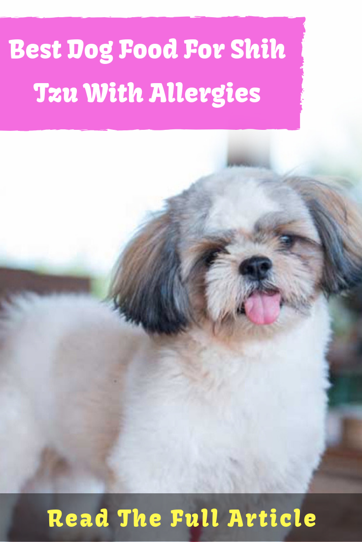Best Dog Food For Shih Tzu With Allergies What Causes Food