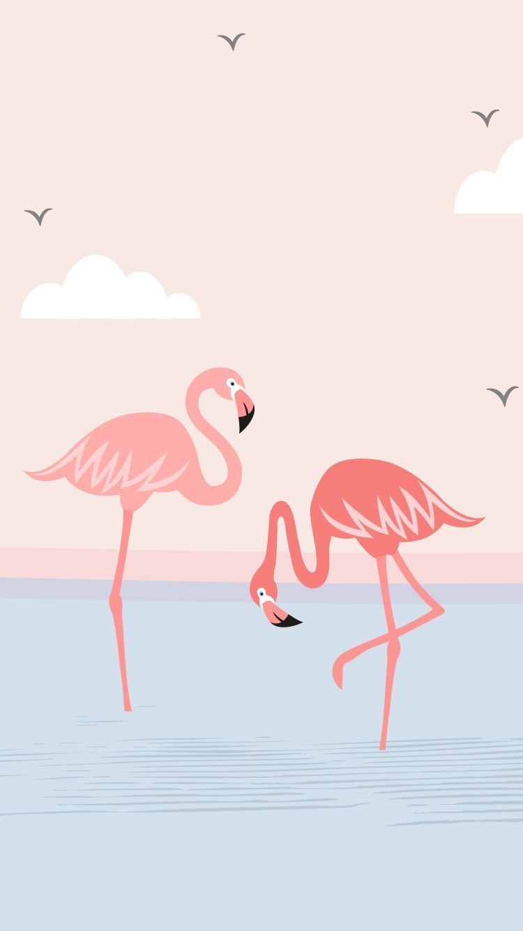 Pin By Lotty Kong On Wallpaper Flamingo Wallpaper Art Wallpaper Cute Wallpapers Lock screen iphone 7 flamingo wallpaper