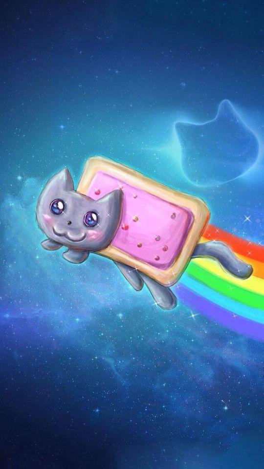 Cute Nyan Cat Wallpaper Nyan Cat Cat Wallpaper Rainbow Photo