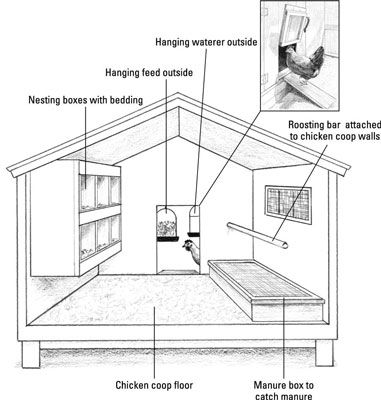 Anatomy of a Garden Chicken Coop dummies