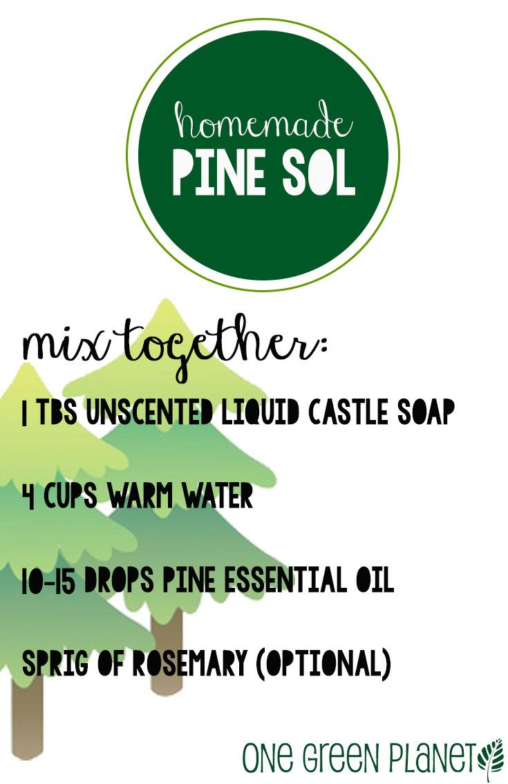 How To Make Pine Oil Floor Cleaner Gurus Floor