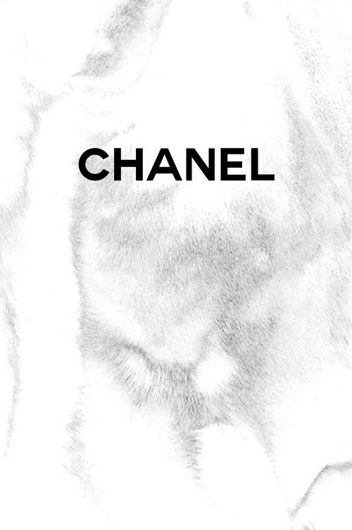 White Fur Chanel Wallpaper Chanel Wallpapers Black And White Photo Wall Chanel