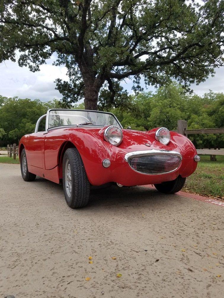 My 1959 Frogeye Austin Healey Sprite Austin Healey British Cars