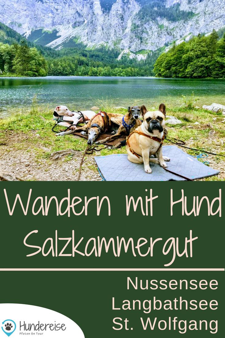 Urlaub Hund Salzkammergut See Wanderung Hund erlaubt
