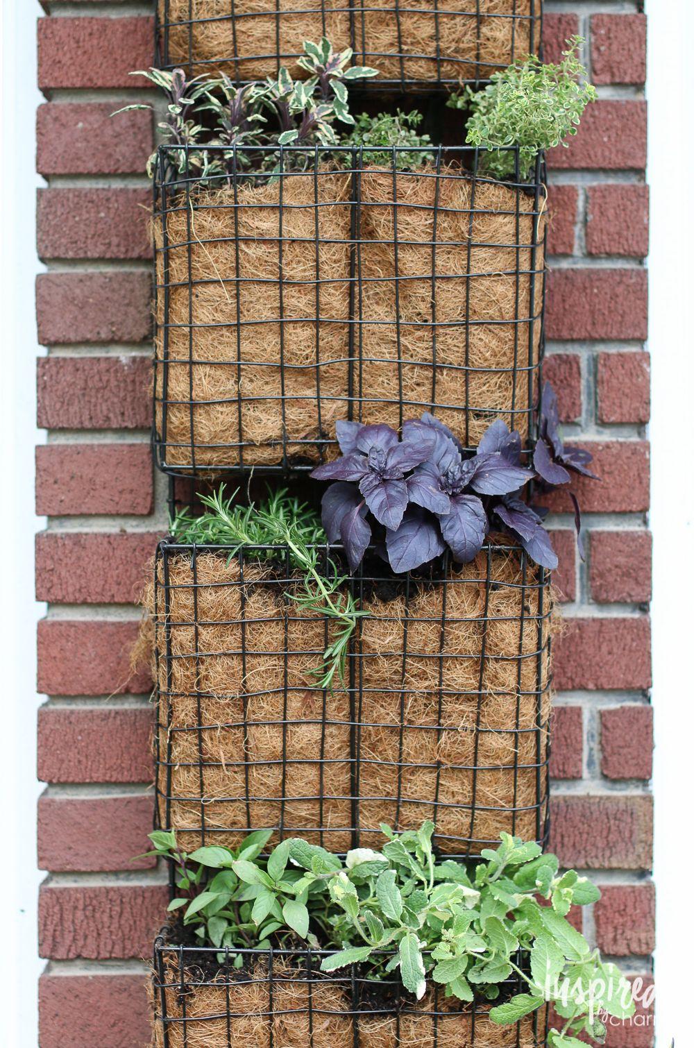 DIY Vertical Herb Garden   Vertical herb gardens, Herbs garden and Herbs
