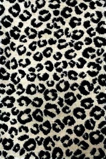 Popular Zebra Carpet Design Designs Trend