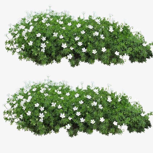 꽃 잔디, 잔디 클립 아트, 전자 꽃, 녹색 풀무료 다운로드를위한 PNG 및 PSD 파일