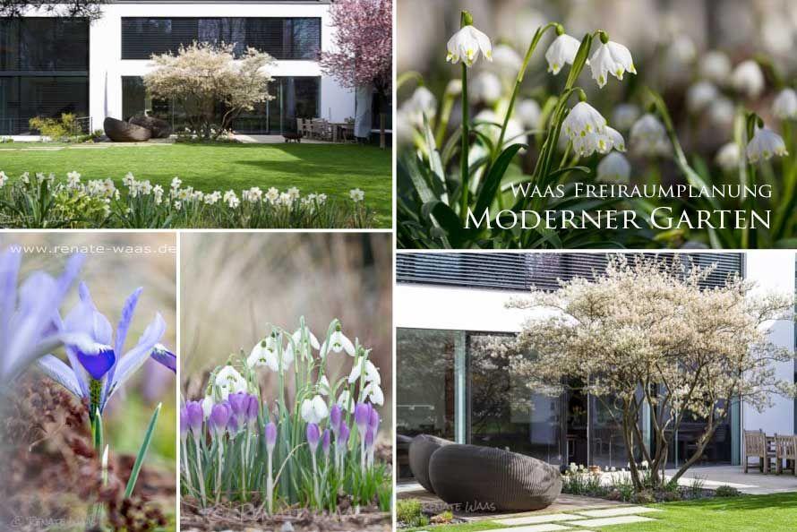 Blumenbeete Gestalten Fur Einen Modernen Garten Mit Blumen