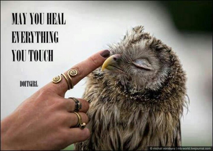 May you heal everything you touch.