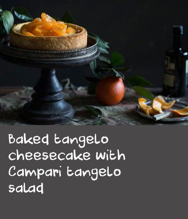 Baked Tangelo Cheesecake With Campari Tangelo Salad