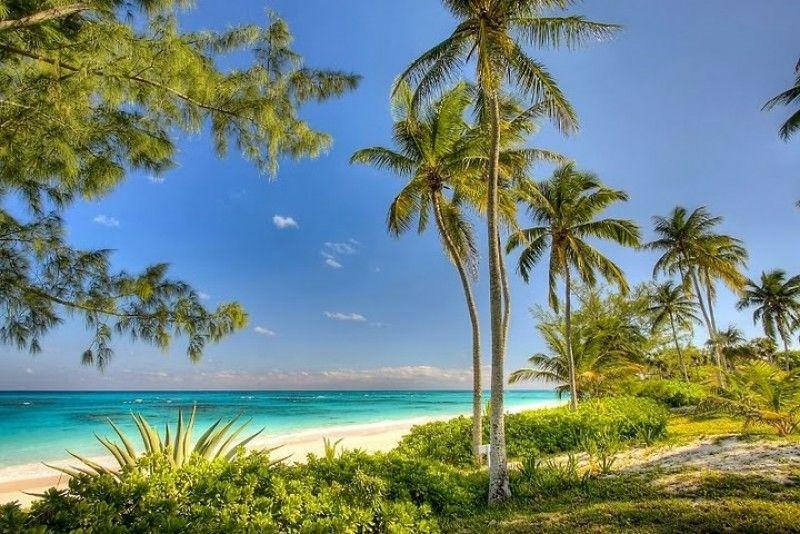 Nassau Villas 7 Palms Villas Caribe Bahamas villas