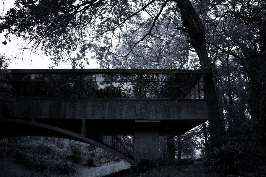 Abandon house 5