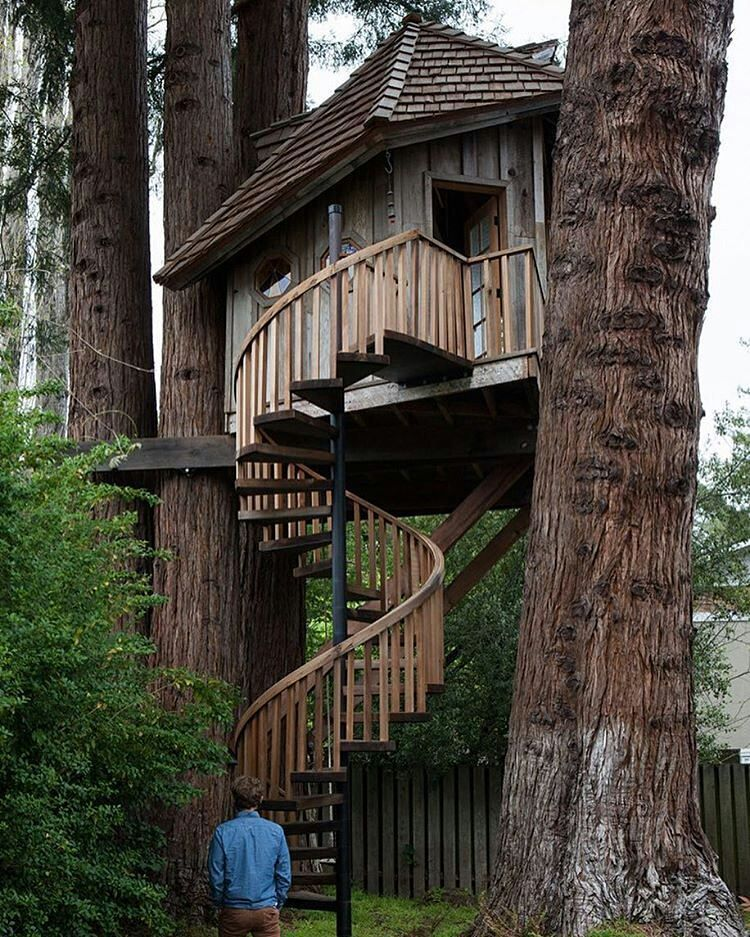 Regrann From Treehousemovement Awesome Spiral Staircase Tree House Owner Jay Treehousemovement Treehouse Tinyhousem Tree House Cool Tree Houses Tree