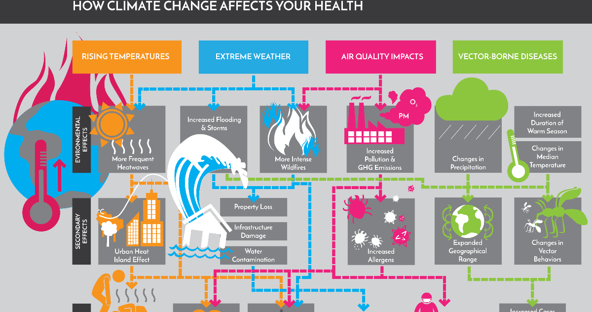 Four Infographics That Show How Climate Change Is Affecting Your