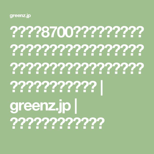 週末は、8700坪の里山で暮らす。千葉県南房総市で馬場未織さんが週末田舎暮らしを続ける理由は「そこが人生で大切な場所」だから | greenz.jp | ほしい未来は、つくろう。