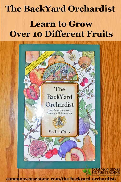 Bring back the backyard fruit tree with Stella Otto's