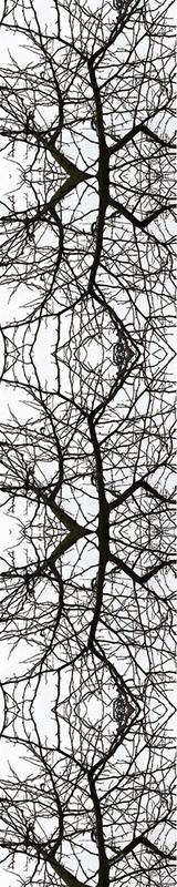 8999552_orig.jpg (160×800)