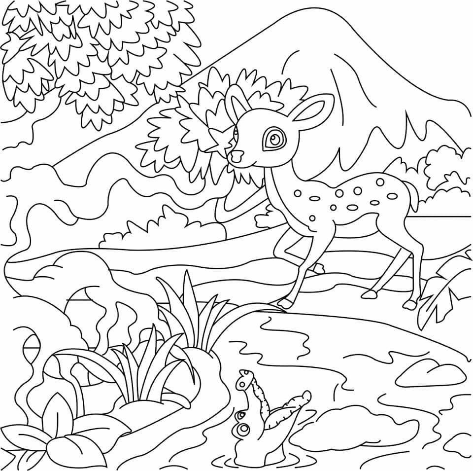 Deer In Forest Coloring Book Page For Kids Forest Coloring Book Coloring Books Graphic Design Services