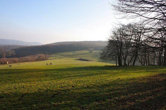 Politik   Beitrge zur Rubrik aus Wienerwald/Neulengbach