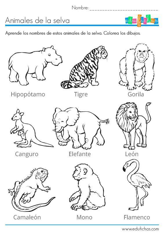 Juegos Con Animales Para Niños Google Search Animales Español