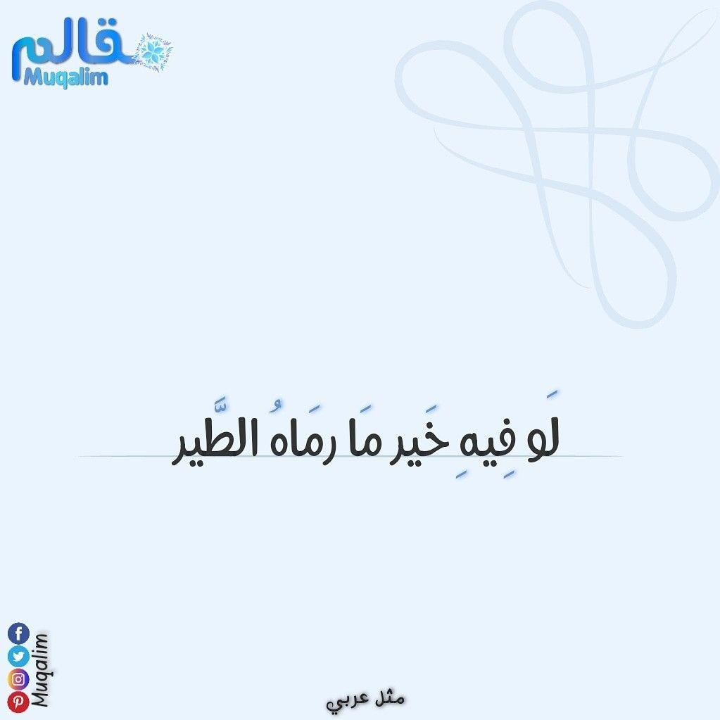 لو كان فيه خير ما رماه الطير يقال هذا المثل لمن يريد أن يأخذ شيئا قد تركه أحد قبله فالشيء المتروك لا خير فيه ولذلك است Math Arabic Calligraphy Math Equations