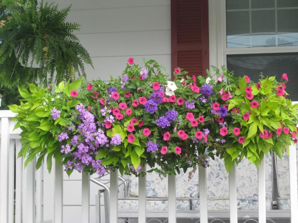 venture away from your window and add a flower box to your deck porch - Patio Flower Boxes Ideas