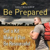 The importance of car survival kits