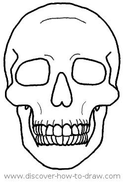 Http Www Discover How To Draw Com Image Files How To Draw A Skull In Front View 0015 Jpg Skulls Drawing Simple Skull Drawing Skeleton Drawings