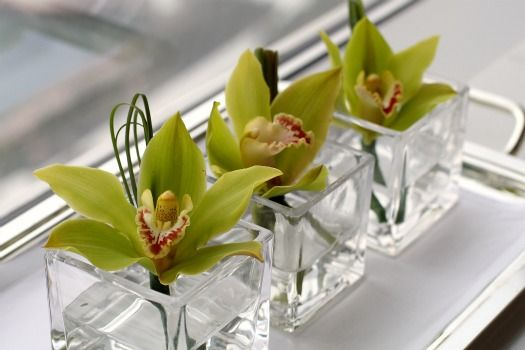 Easy Single Bloom Orchid Flower Arrangements Orchid Flower Arrangements Orchid Arrangements Flower Arrangements