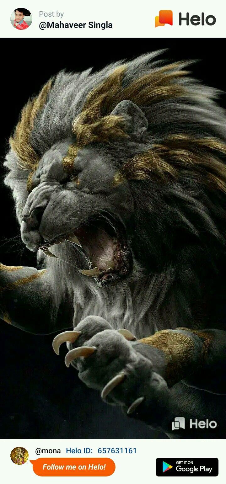 Pin by Sandhya Ujawane on animal Lion wallpaper, Wild