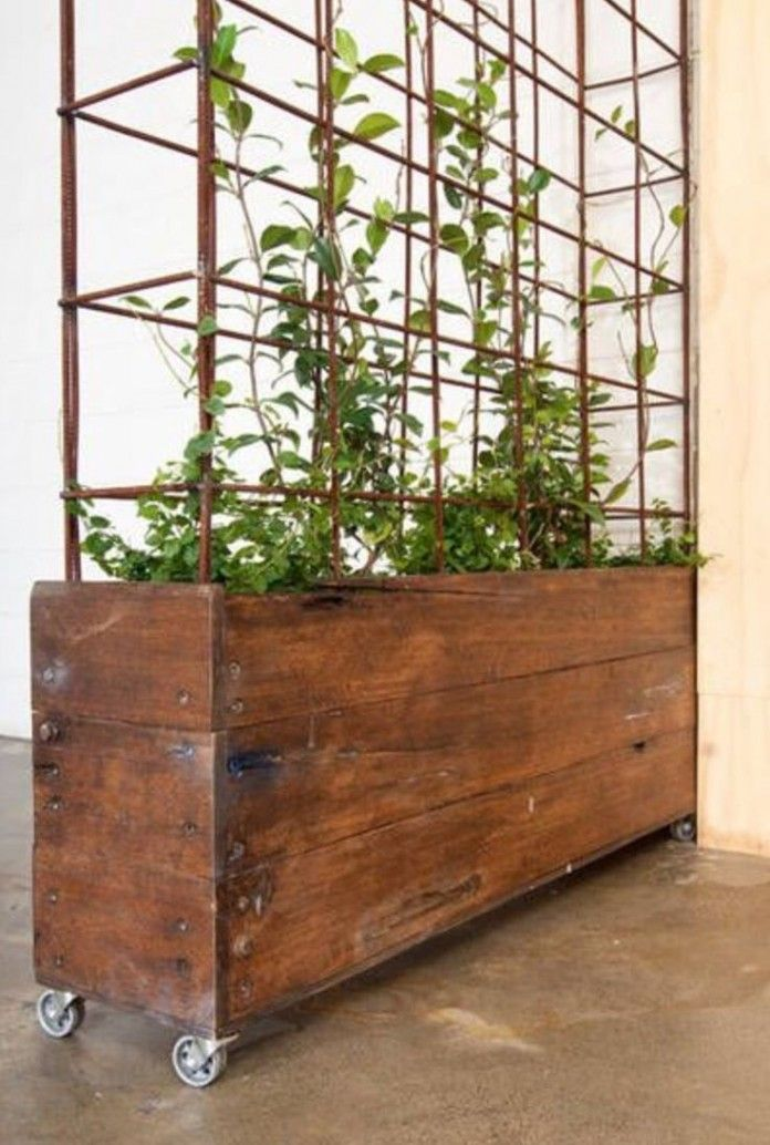 Trellis designed as a metal cage