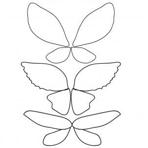 How To Draw Fairy Wings Step By Step Fairies Fantasy Free Fairy Drawings Wings Drawing Fairy Wings Drawing