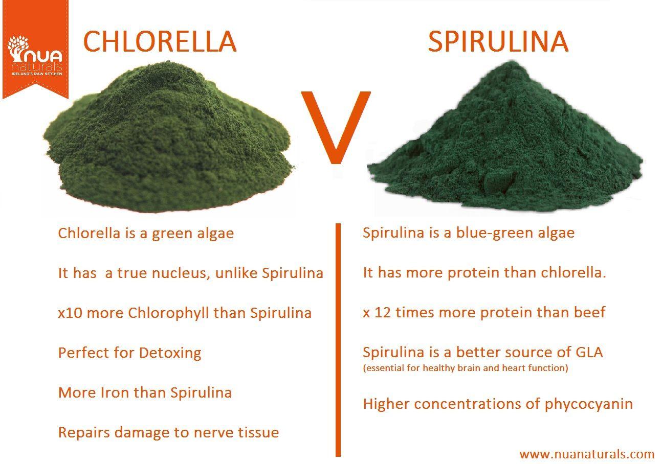 spirulina en chlorella