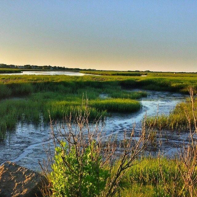 Plum Island Beach: National Wildlife Refuge By Reader 12 On Serenity Is