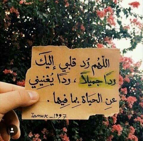 اللهم امين يارب العالمين Muslim Quotes Sweet Words Words Quotes