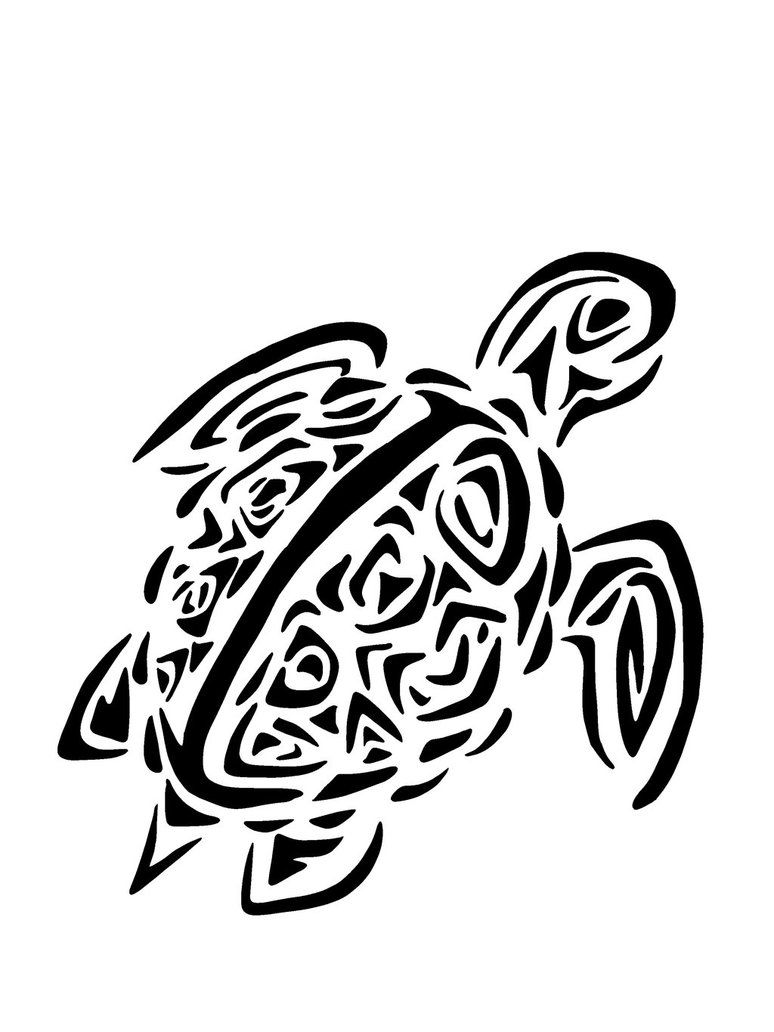 Tribal Turtle Drawing Viewing Fun Sea Turtles