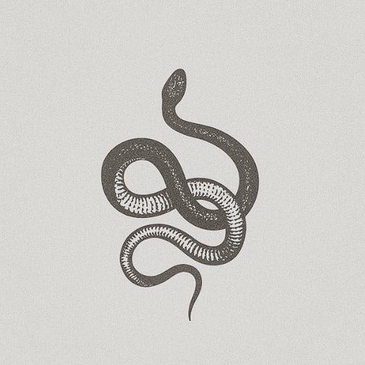 "tali on Instagram: ""⋆❁ the snake spirit represents spiritual renewal ~"