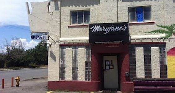 Marijuana: Maryjane's cannabis social club still closed after police raid