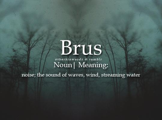 Otherkin Words   I Like The Brus Sound Of The Crashing