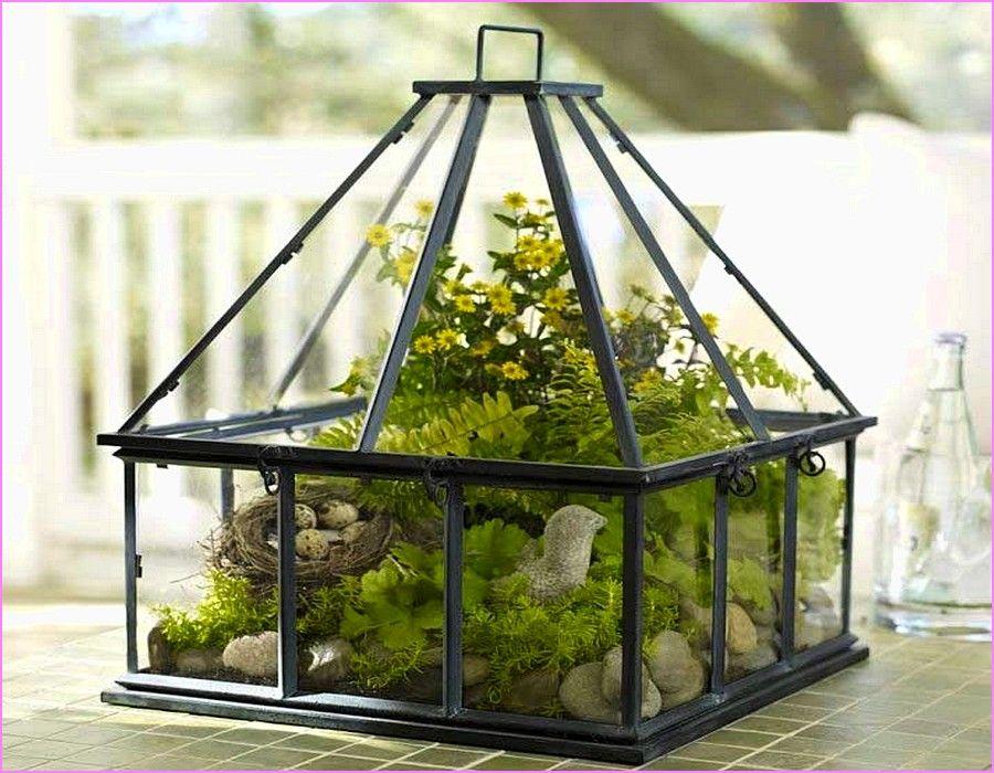 застекленная тепличка для комнатных растений фото