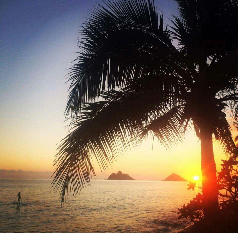 Hawaiian Sparks: HORIZON