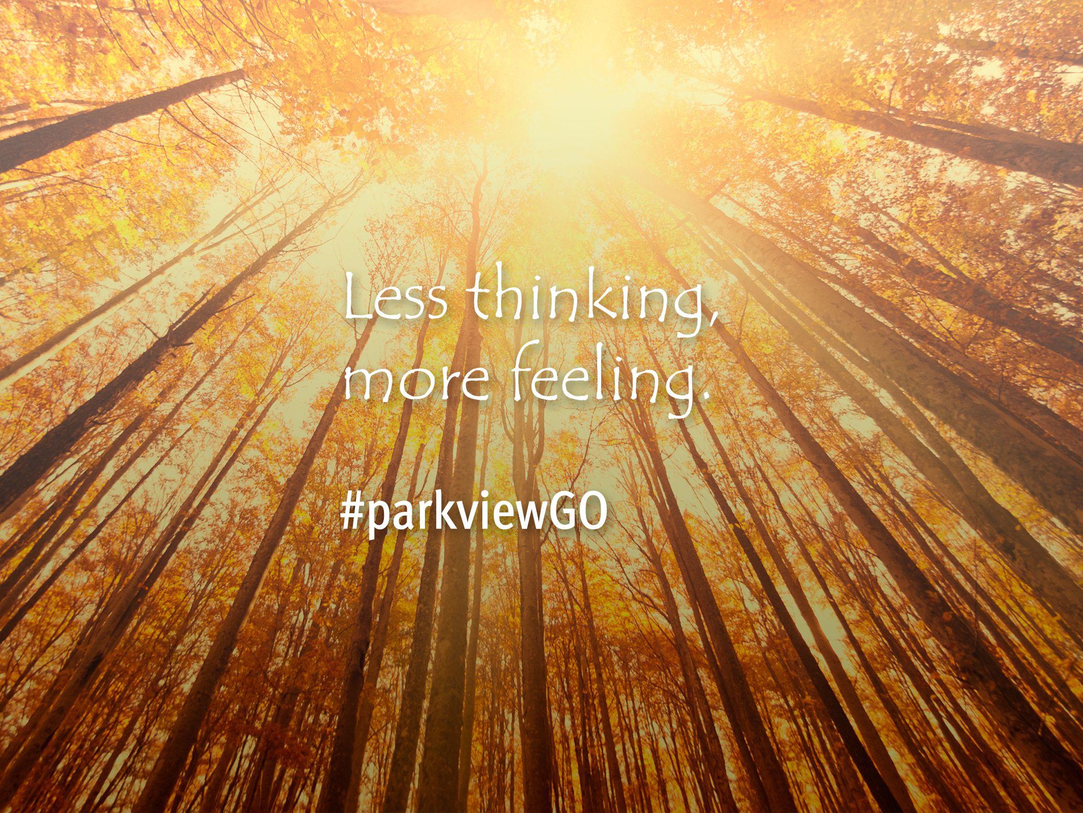 Desktop Wallpaper Download #quote #mindfulness #meditation | via @ParkviewHealth