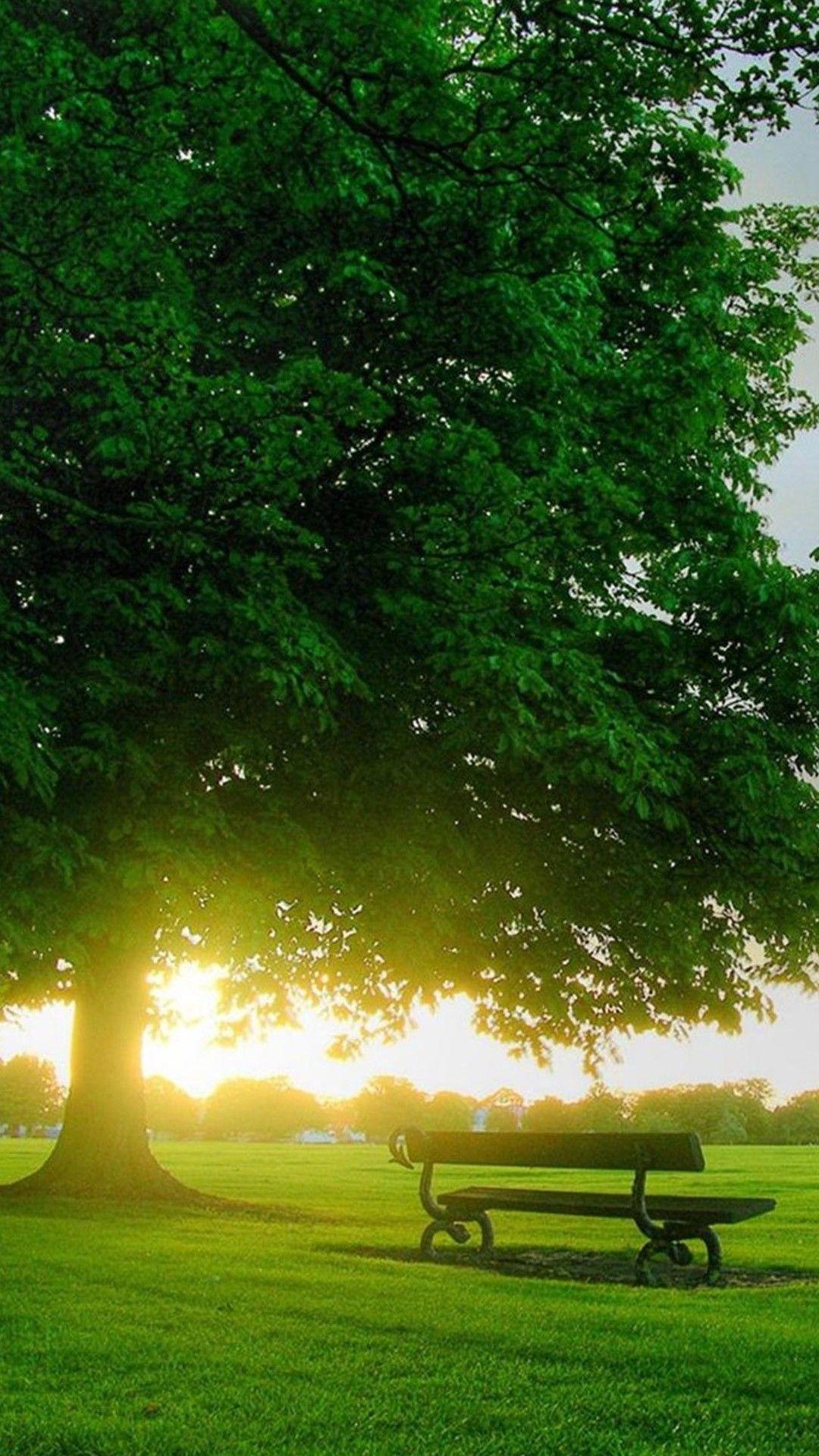 Nature LG G2 Wallpapers HD 95 | Wallpapers | Pinterest ...  Nature LG G2 Wa...