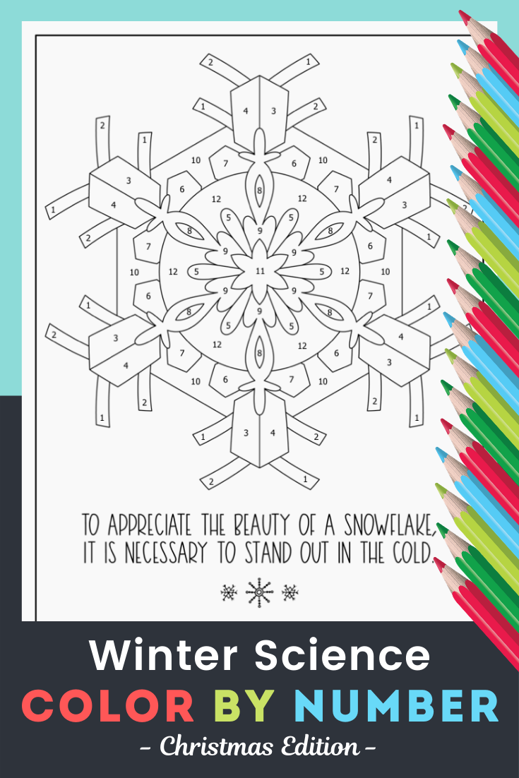 Winter Science Activity Color By Number Fun Winter Science Worksheet Winter Science Winter Science Activities Science Activities