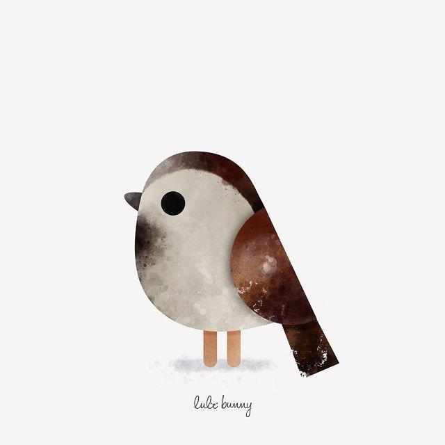Ornithology -- House sparrow | Gorrión Común (Passer domesticus) #illustration #ilustracion #characterdesign #birds #ornithology #gorrion #sparrow #lulibunny by lulithebunny