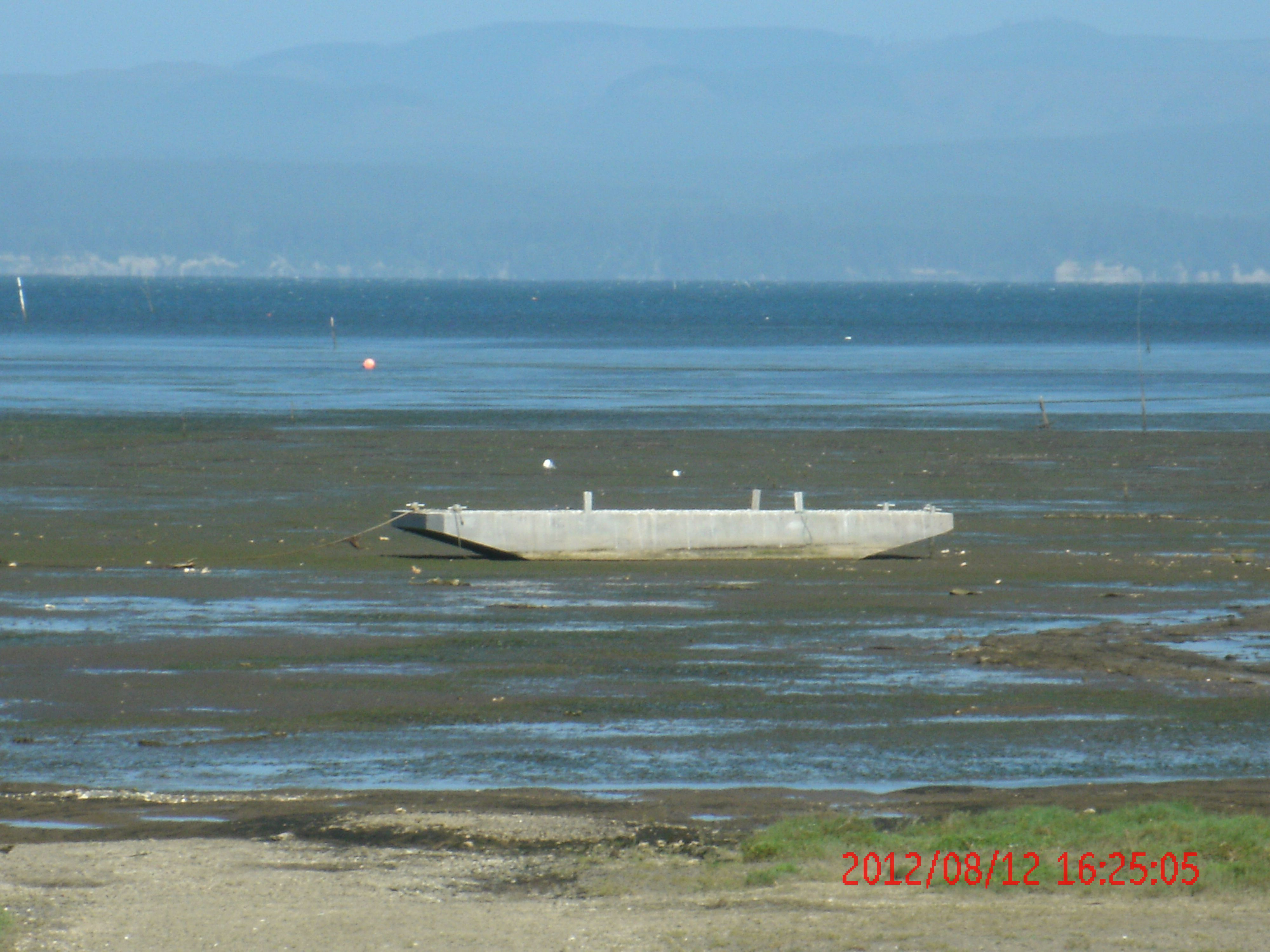 Low tide at Oysterville, Washington
