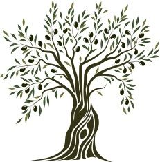 Coloriage Arbre Dolive.Olive Tree Vector Art Illustration Drawing Ideas Tips