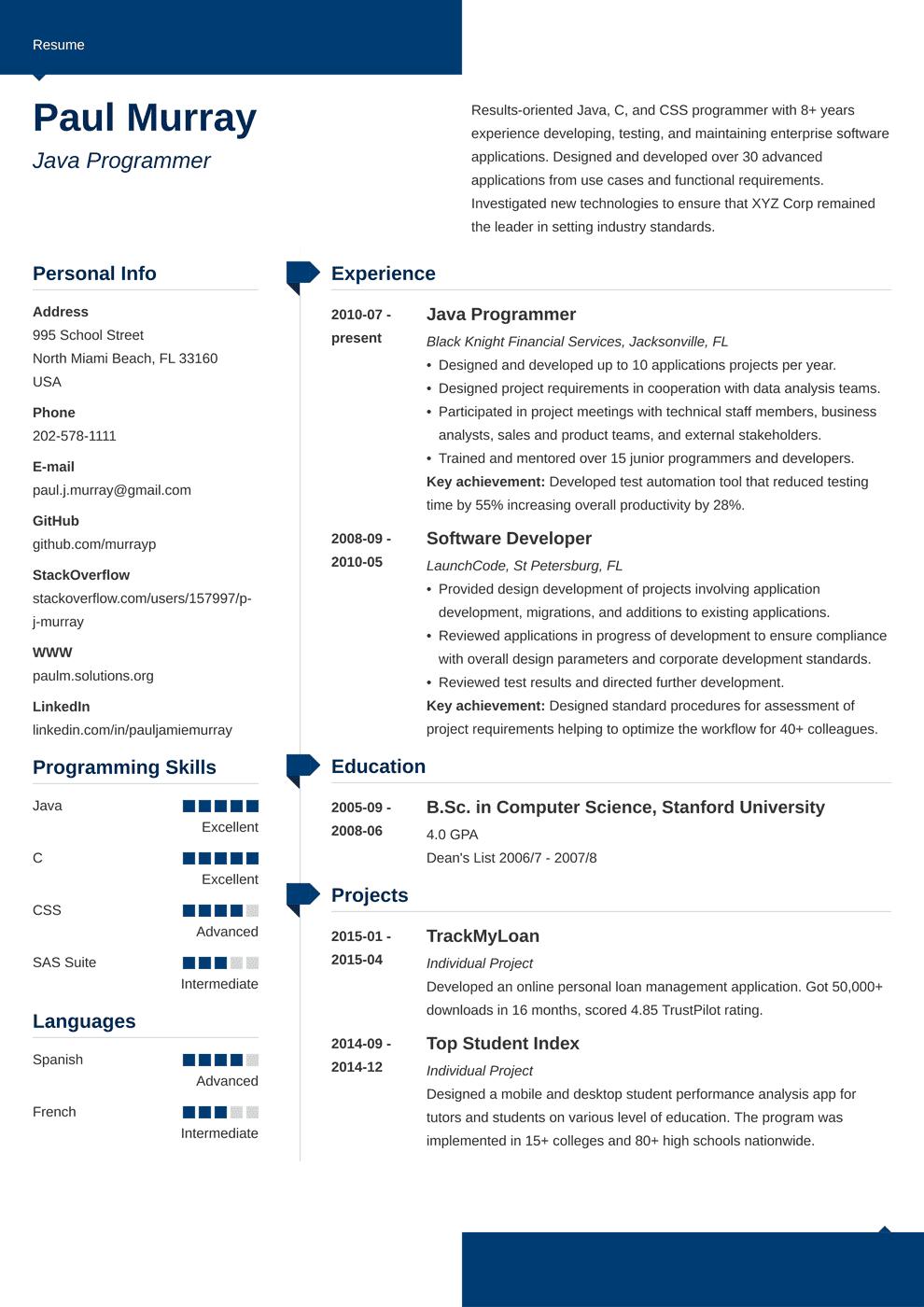 Programmer Resume Template Modern Resume Examples Resume Job Resume Examples