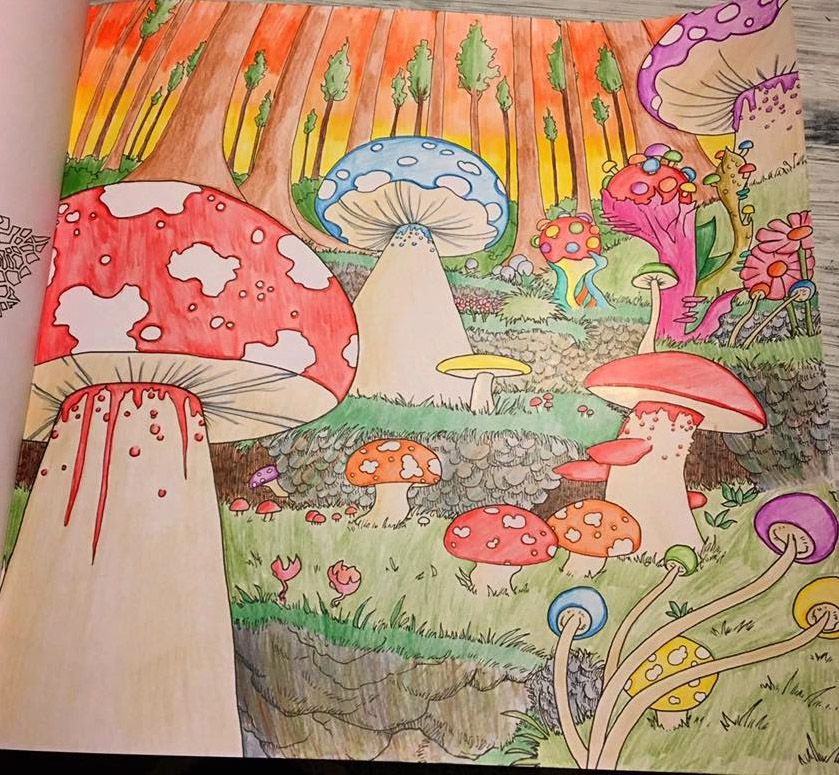 Mushroom World By Tarin Anneliese Collinson