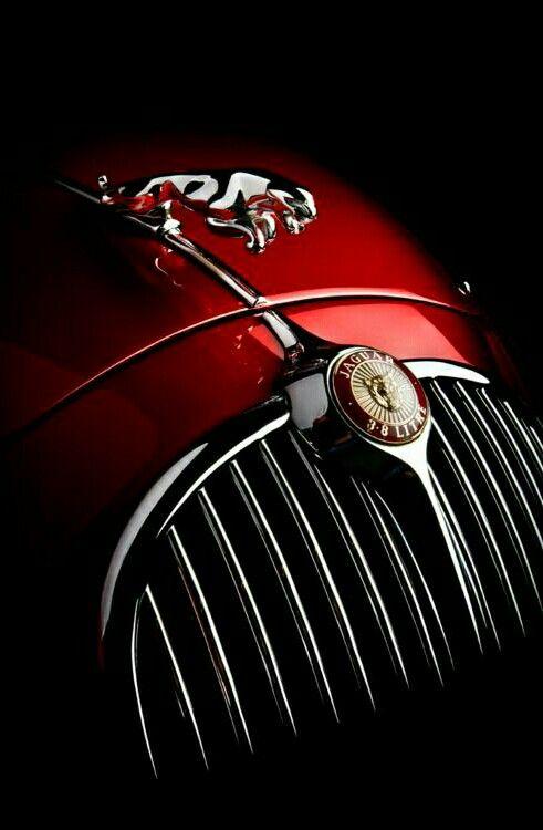 pin by robert matthews on jaguars pinterest cars hoods and car